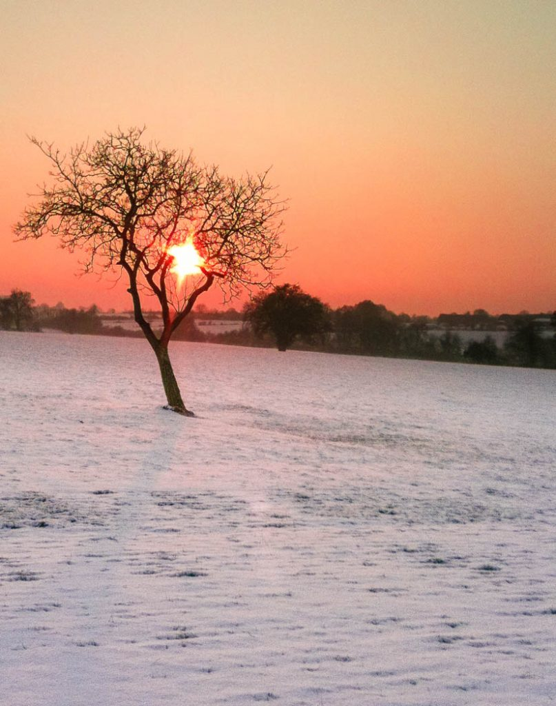 Sunset in the French Countryside before Christmas.