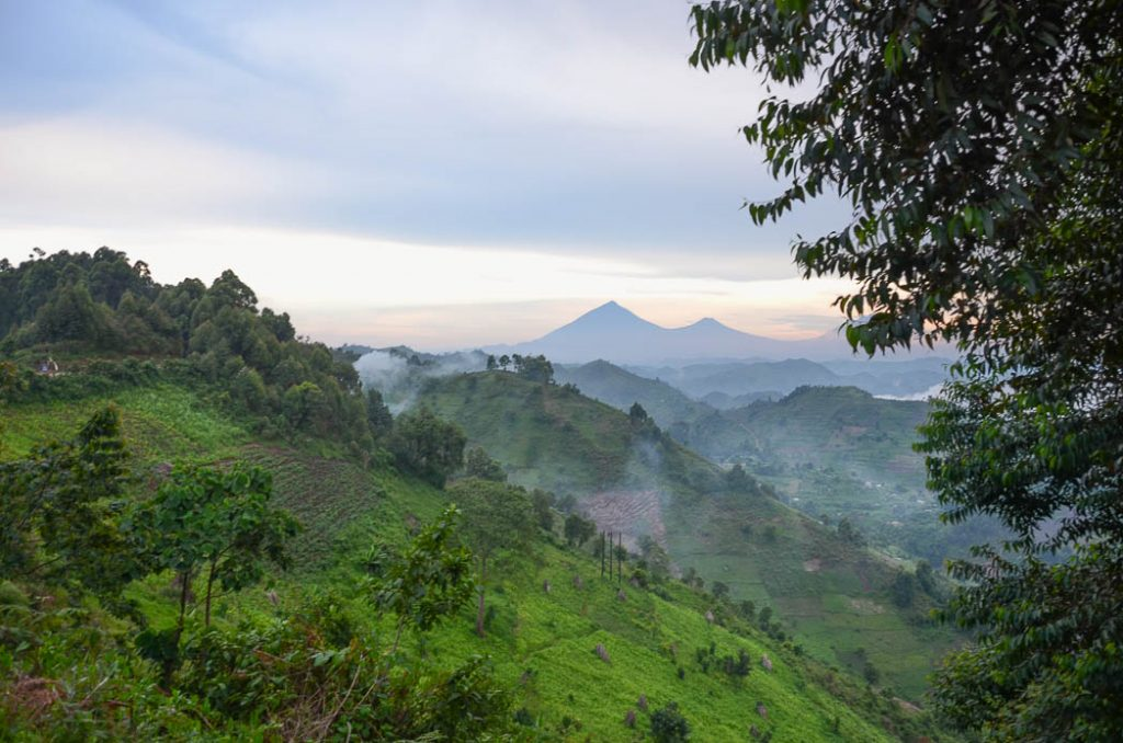 Looking towards the Virunga hills in the Congo.